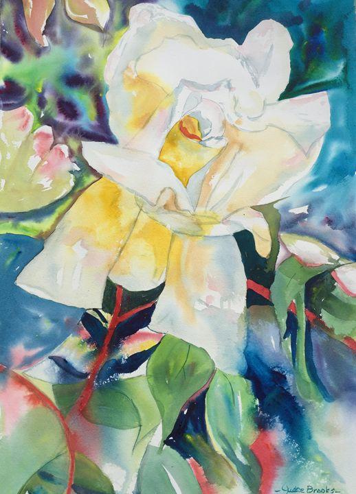 White Rose of New Beginnings - Judee Brooks