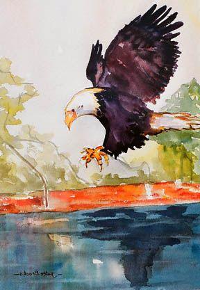American Bald Eagle Dinner Fishing - Judee Brooks