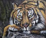 Original acrylic tiger painting.