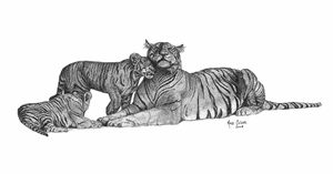 Tigers Pointillism Drawing