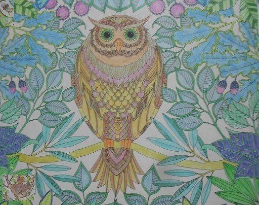 owl - compu art