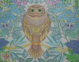 hand drawn owl