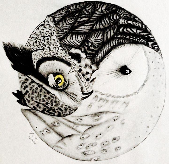 Yin-Yang Owl Drawing - Jayson Art