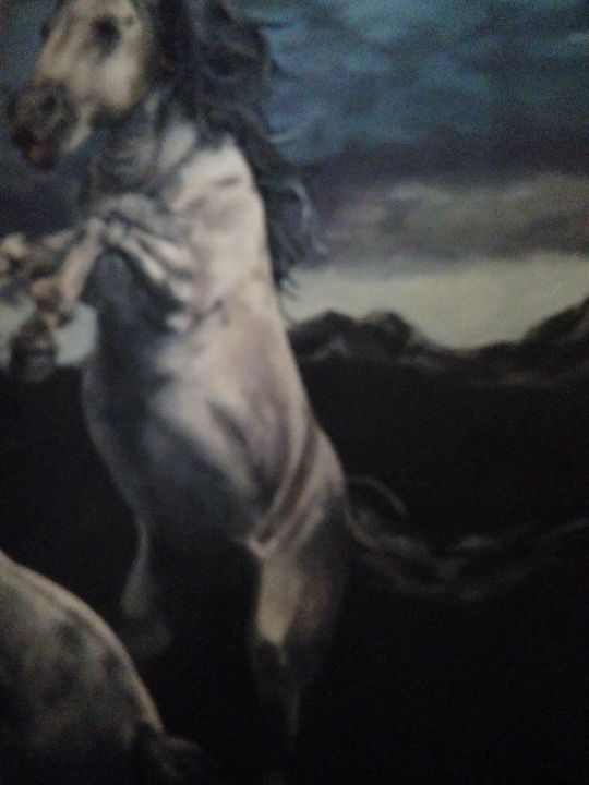 Wild horses - Art of Joan frances fisher
