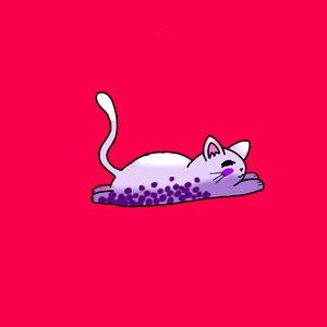 Boba Cat - Ivegotajar