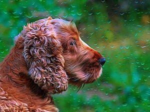 Cocker Spaniel Profile impressionist