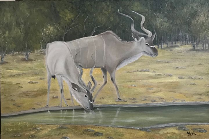 Kudus at a waterhole - NOELINE'S ART GALLERY