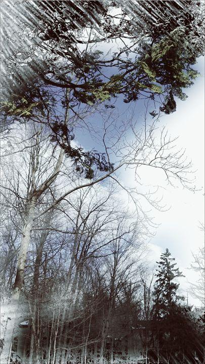 Beauty in the air - Paul Szakacs