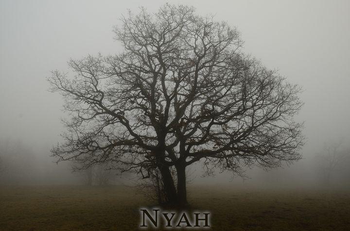 nyah.woods6 - Nyah