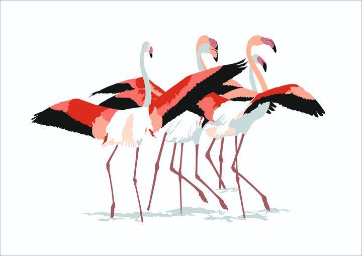 Flamingos. - Larisa