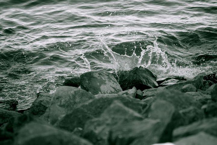 Splashing - Nature & Animals
