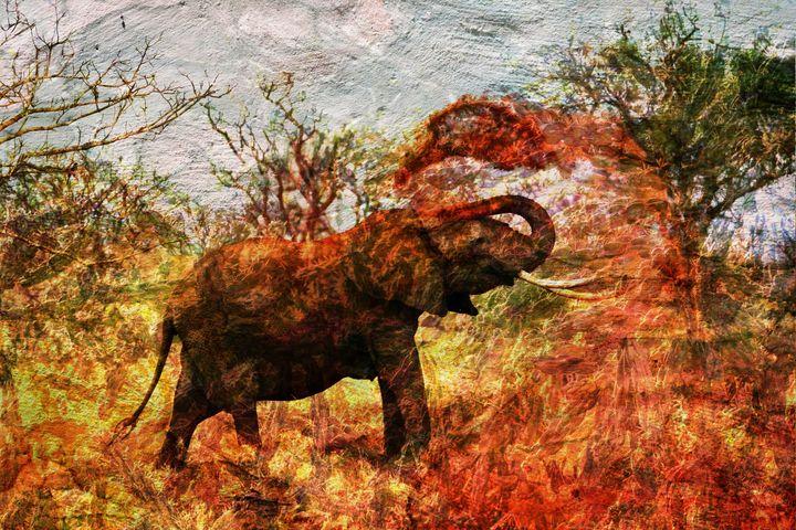 3D ELEPHANT ART PRINTS - MODERN ART PRINTS SALE 3D ARTWORK 3D ART PICTURES