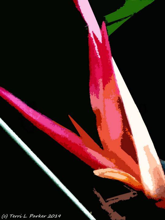 Bird of Paradise 3 - Artgal Creations