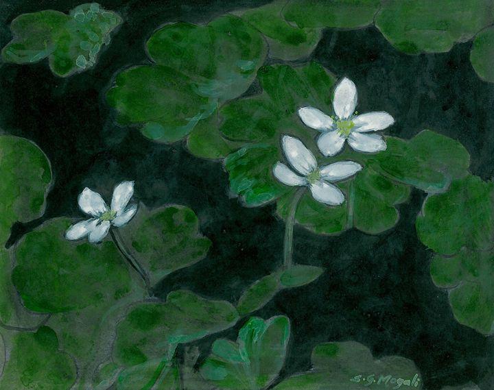 WILD FLOWERS II - SHIVAYOGI MOGALI