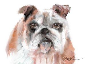 Bulldoggy