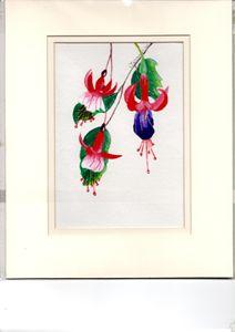 GORGEOUS FUCHSIA - JEANNIE'S  FLOWER GARDEN