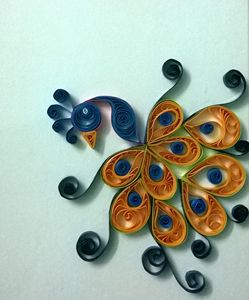 Indian Quilled peacock
