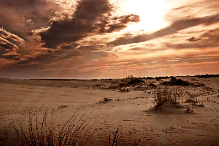 Deseret Sand - Gallery Three Photography