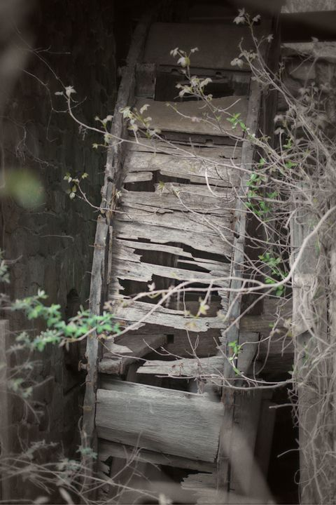 Abandoned Water Wheel - Gallery Three Photography
