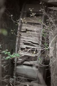 Abandoned Water Wheel