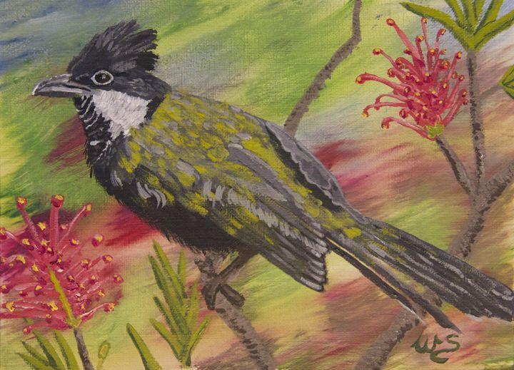 Whip Bird in Grevillea - Wendy's Art
