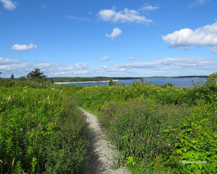 Crystal Crescent Beach Trail - Monica Sugg