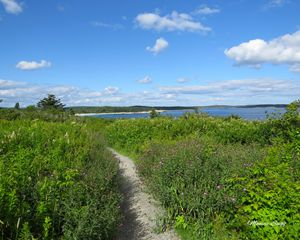 Crystal Crescent Beach Trail