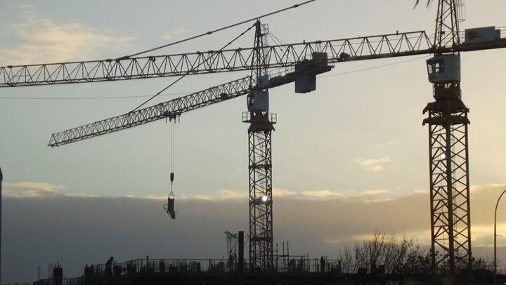 Cranes -  Garciadodgen