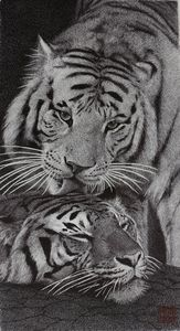 Two tigers - J.S.