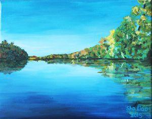 Maine Stillwater landscape