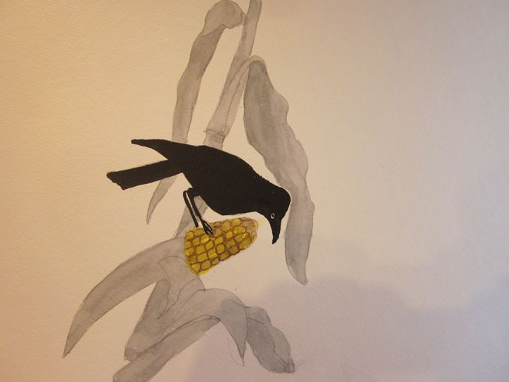 Crow on Corn 506 - Mark Jenkins Watercolors