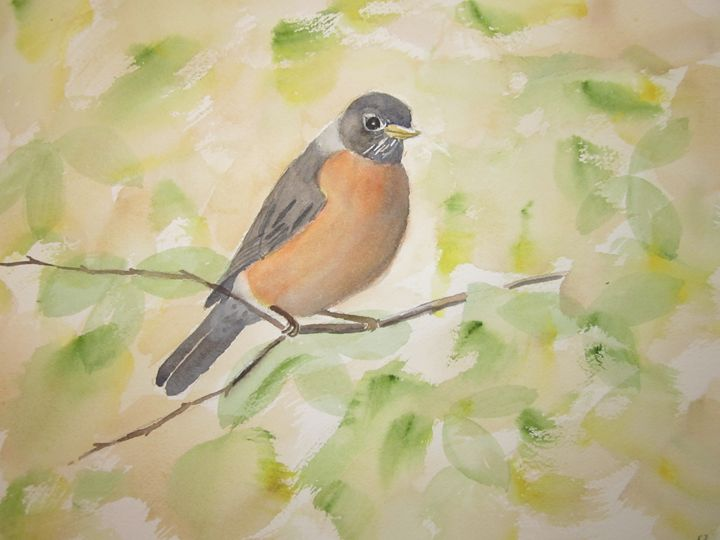 Garden Robin 101 - Mark Jenkins Watercolors