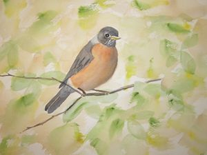 Garden Robin 101 - Mark Jenkins Watercolors