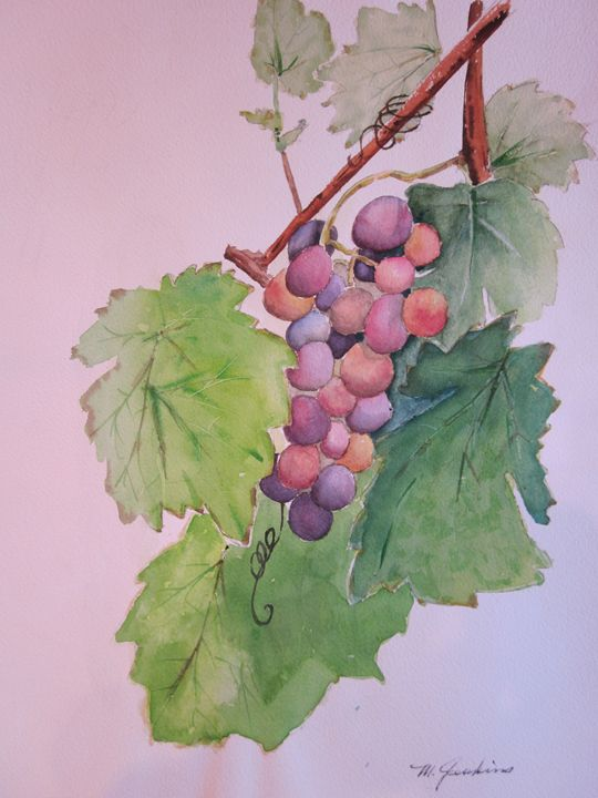 Napa, Beautiful Napa 589 - Mark Jenkins Watercolors
