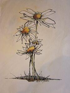 Flowers Pen & Ink 671 - Mark Jenkins Watercolors