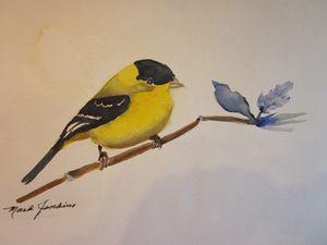 Bird 631 a