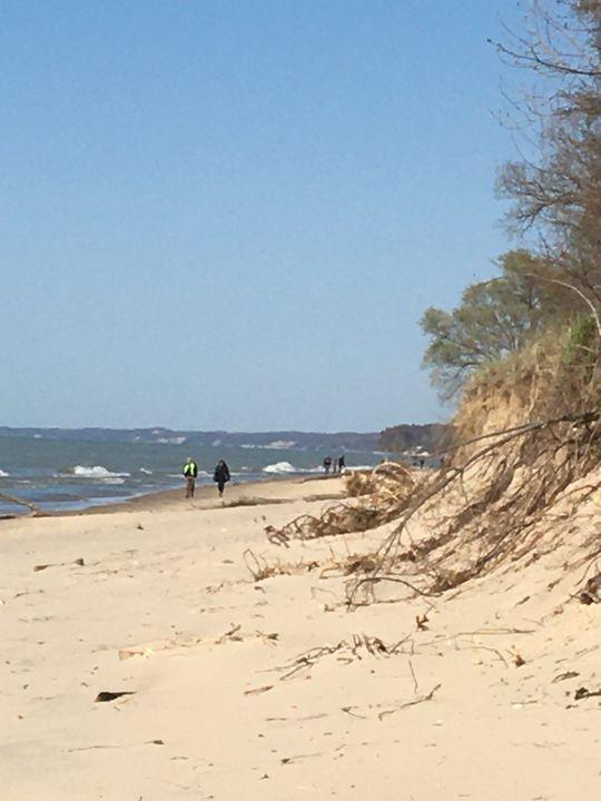 Beach dunes - Cabin 7 Art