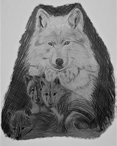 Wolf and Three Cubs