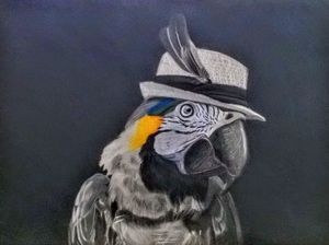 Blue Throat-ed Macaw with hat