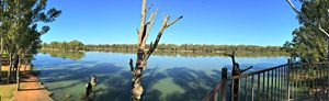 Darling and Murray River Junction