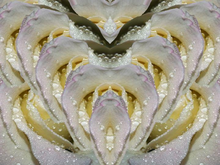 Without blemish love - Harold' s Digital Art Anthem