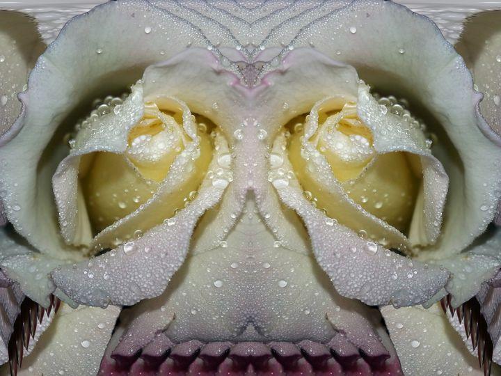 Submit to love - Harold' s Digital Art Anthem