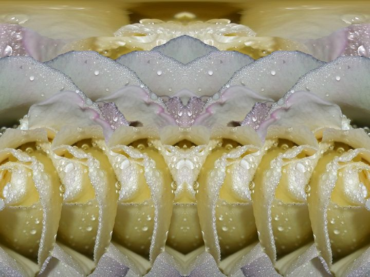 Linger long with love - Harold' s Digital Art Anthem