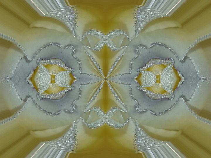 love is not feeble - Harold' s Digital Art Anthem