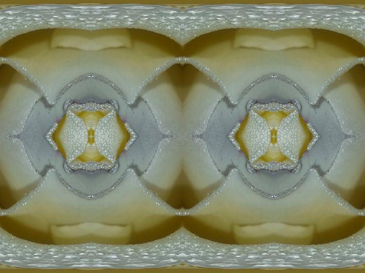 Able love - Harold' s Digital Art Anthem