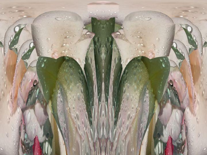Love embrace not reject - Harold' s Digital Art Anthem