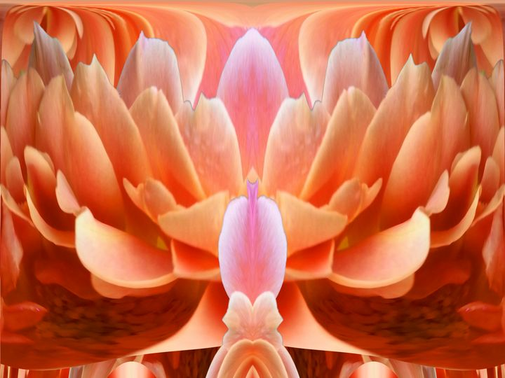 Heart's on wings love - Harold' s Digital Art Anthem