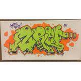 """7'x14"""" Neon ZREF canvas"""