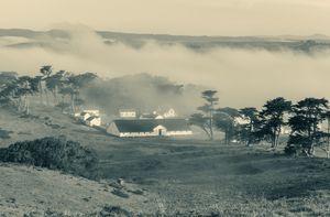 fog over pierce ranch monochrome