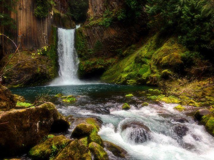 Toketee Falls - Silhouettes